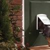 Plastic Pet Door with Clear Hard Flap