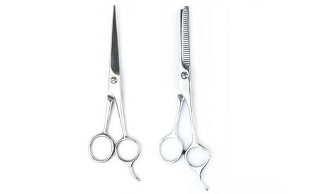 Set di 2 forbici professionali da barbiere in acciaio inossidabile