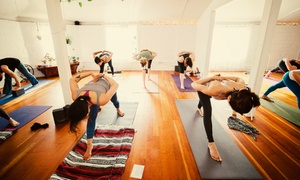 Up to 54% Off Yoga Classes at Love Hive Yoga at Love Hive Yoga, plus 6.0% Cash Back from Ebates.