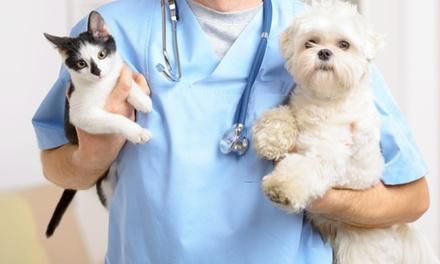 Revisión y vacuna para mascotas con opción a corte de uñas o microchip por 24,95 € en Chic