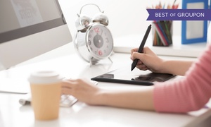 Graphic designer - Accademia Domani - E-learning: Videocorso di Graphic designer più attestato con Accademia Domani (sconto 90%)
