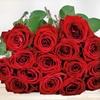 Strauß mit 15 Red Naomi Rosen
