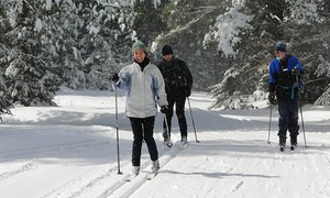 Lapland Lake - Leisure: Winter Sports Pass for Two or Four or Ski-Like-A-Finn Package for Two at Lapland Lake (Up to 51% Off)