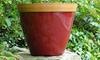 Essential Colour Planters