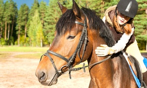 Scuderia Horse Back A.S.D: 3 o 5 lezioni di equitazione per bambini o ragazzi dai 4 ai 16 anni alla Scuderia Horse Back A.S.D (sconto fino a 76%)