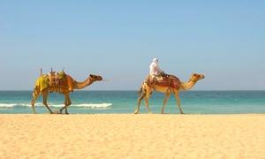 ✈ Agadir : 4 ou 7 nuits 4* en demi-pension et vols A/R  Agadir