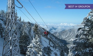 Mt. Baldy: Scenic Lift Ticket for Skiing and Snowboarding for One or Two Adults at Mt. Baldy (Up to 50% Off)