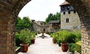 Ecomusée d'Alsace: Une entrée pour adulte ou enfant à l'Ecomusée d'Alsace dès 6,90 €