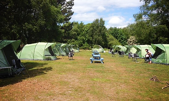 New Forest Camping