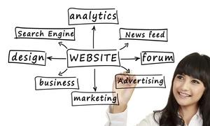 Social Geckos LLC: Website Design Services at Social Geckos (51% Off)