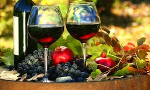 Cantina Villafranca: Degustazione vino e prodotti tipici e visita guidata per 2, 4 o 6 persone alla Cantina Villafranca, ai Castelli Romani
