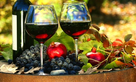 Tour vigneti e cantina, con degustazione vini