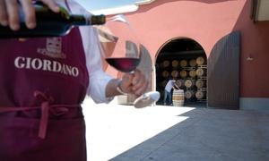Giordano Vini: Degustazione di vini rossi e bianchi con tagliere misto per 2 o 4 persone alla cantina Giordano Vini (sconto fino a 78%)