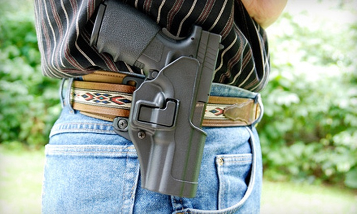 Active Defense Awareness Training - Multiple Locations: Concealed-Carry Course for One or Two with Option for Live Fire at Active Defense Awareness Training (Up to 63% Off)