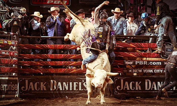 PBR: Built Ford Tough Series - Southeast Anaheim: $24 to See PBR: Built Ford Tough Series at Honda Center on February 8, 9, or 10 (Up to $48 Value)