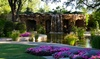 Dallas Arboretum and Botanical Garden - The Dallas Arboretum: General Admission for One or Two to Summer at the Arboretum at Dallas Arboretum and Botanical Garden (Up to 47% Off)
