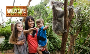 Sydney Wildlife World: Koala Breakfast Package & WILD LIFE Entry: Child ($45), Adult ($55), or Family ($180) at WILD LIFE Sydney Zoo