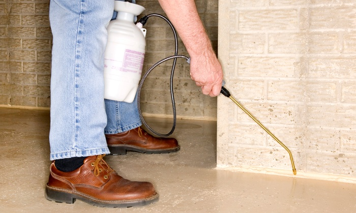 Savior Termite and Pest Control - Fort Worth: Interior and Exterior Pest Control or Mosquito Yard Service from Savior Termite and Pest Control (Up to 75% Off)