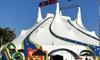 3-Hour Circus Rio Carnival Entry