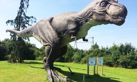 Dino's: dagentree voor Landgoed Tenaxx in Wedde in Groningen