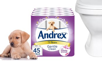 Andrex Gentle Clean, 45 Rolls
