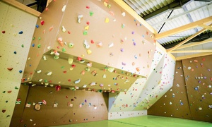 Bloc N' Roc: 1 ou 3 séances d'escalade avec location de chaussons dès 7 € à la salle de blocs Bloc N' Roc