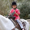 Up to 61% Off a Horseback-Riding Lesson
