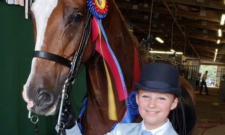 Two Private Horseback Riding Lessons for One Child or Adult at Louw Stables (Up to 49% Off)