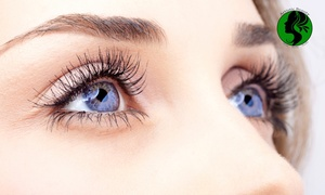 Artistic Beauty - Skin, Body and Nails: Full Set Eyelash Extensions - Classic ($39) or Double ($49) at Artistic Beauty - Skin, Body and Nails (Up to $120 Value)