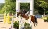 Great Lakes Equestrian Festival 2016 - Flintfields Horse Park: Great Lakes Equestrian Festival (July 10–August 28)