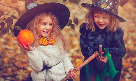 Unusual Seasonal Afternoon Tea For Two Or Four At Wyevale Garden Centres  With Outstanding Halloween Show  Afternoon Tea For An Adult And Up To Two Children At  Whilton Locks With Alluring Pentre Gardens Cardiff Also B And Q Garden Tables In Addition Pvz Garden Warfare Gameplay And Sally Garden As Well As Garden Gazebo With Sides Additionally Gardeners In Tamworth From Toysluxco With   Outstanding Seasonal Afternoon Tea For Two Or Four At Wyevale Garden Centres  With Alluring Halloween Show  Afternoon Tea For An Adult And Up To Two Children At  Whilton Locks And Unusual Pentre Gardens Cardiff Also B And Q Garden Tables In Addition Pvz Garden Warfare Gameplay From Toysluxco