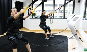 Flash Fit Exclusive: Up to Ten Sessions of Electrical Muscle Stimulation (EMS) at Flash Fit Exclusive (Up to 73% Off)