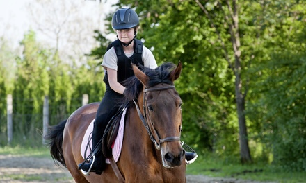 Saturday Pony Camp for One or Two, or One Private or Semiprivate Lesson at Boca Riding Club (Up to 50% Off)