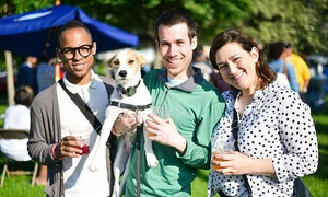 Hyde Park Brew Fest: Beer-Tasting Tickets for One, Two, or Four at Hyde Park Brew Fest on June 4 or 5 (Up to 60% Off)