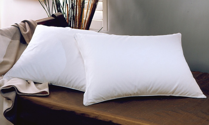 Two- or Four-Pack of Down-Alternative Pillows: Two or Four Down-Alternative Standard Pillows (Up to 70% Off). Free Shipping.