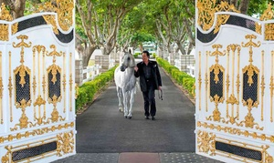 Admission or Tour to Wayne Newton's Casa De Shenandoh (Up to 63% Off). Four Options Available.
