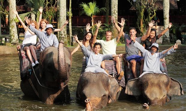 Bali: Elephant Ride & Show 2