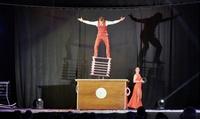 Spectacle Les stars du cirque pour 2 ou 3 personnes dès39,90 €à Erstein