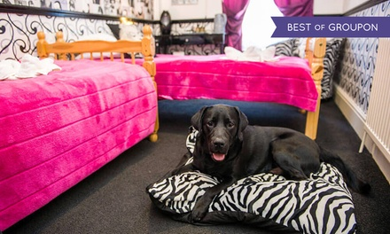 Scarborough:1 or 2 Nights for Two with Breakfast at DogFriendly Scarborough Travel & Holiday Lodge