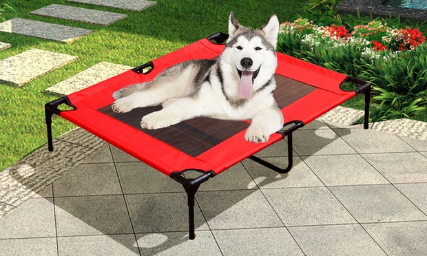 Raised Pet Bed Hammock Groupon Goods