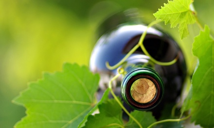 Visita cantina, degustazione vini