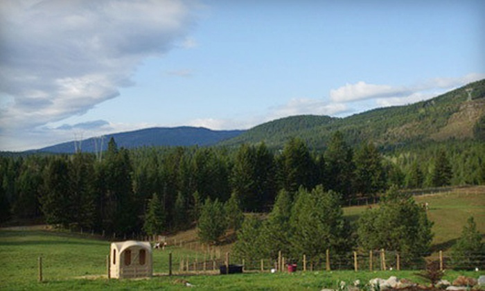ShyLynn Ranch - Salmon Arm: $25 for Two Nights of RV or Tent Camping at ShyLynn Ranch (Up to $50 Value)