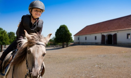 One or Four 30- or 60-Minute Private Lessons for One at Clover Hill Farm (Up to 46% Off)