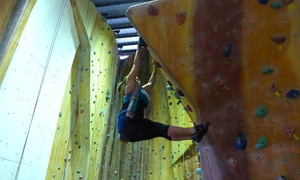 PWR Urban Ascent: Indoor Rock Climbing Day Pass for One ($8), Two ($15) or Four People ($29) at PWR Urban Ascent (Up to $64 Value)