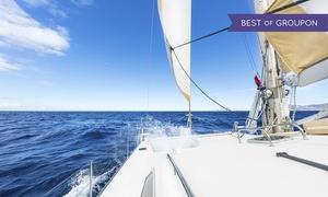 Blue Dream (Roma): Patente nautica entro e oltre le 12 miglia con corso teorico e uscite in mare organizzati da Blue Dream (sconto 78%)