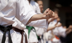 L.I. Traditional Tae Kwon Do: One or Three Months of Tae Kwon Do Lessons at L.I. Traditional Tae Kwon Do (Up to 62% Off)