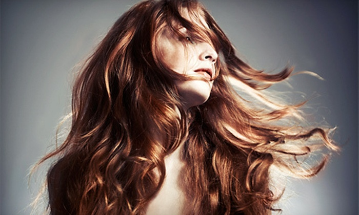 Dye Hair Salon - Downtown Royal Oak: Haircut or Highlights Package at Dye Hair Salon (Up to 61% Off)