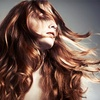 Up to 61% Off at Dye Hair Salon