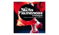 Pass 1 ou 2 jours pour le Les Nuits Flamencas à Aubagne dès 10 €