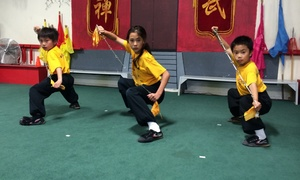 Fei Si Fu Kung Fu Academy: Four Weeks of Unlimited Martial Arts Classes at Fei Si Fu Kung Fu Academy (59% Off)